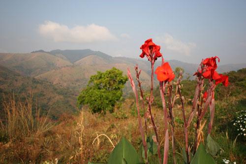 Burundian Landscape